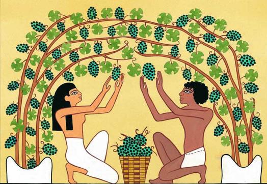 чем питались древние египтяне фото